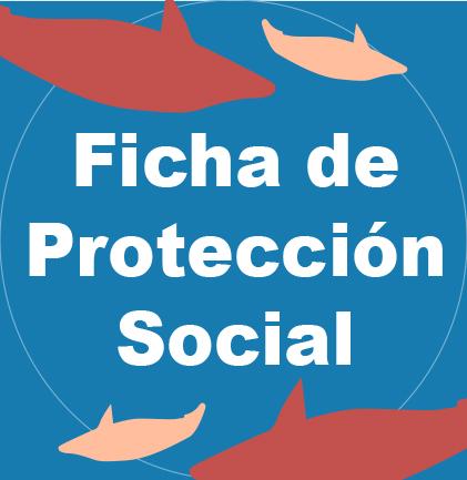 FichaProteccionSocial2